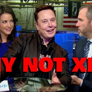 """WHY NOT XRP?! Elon Musk SLAMS BTC, Says It's """"HIGHLY CENTRALIZED"""" - Ripple Employee JUMPS IN"""