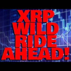 Analysts Indicate: XRP WILD RIDE AHEAD! Market Recovers & The FLUSH Did What It Needed To