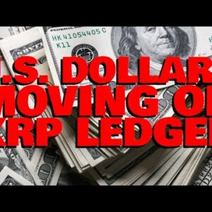 Ripple Employee: U.S. Dollars TRANSACTED ON XRP LEDGER | BTC Maximalists CAN'T STOP Innovation