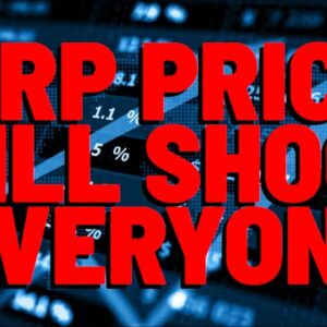 "Analyst: ""I REMAIN MACRO BULLISH ON XRP"" & Says $20.00+ XRP Still Happening THIS CYCLE"