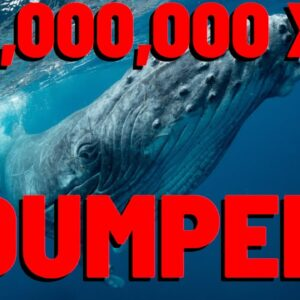 214 MILLION XRP DUMPED By Whale As Market TANKS | People BANNED From Claiming Spark Tokens EXPLAINED