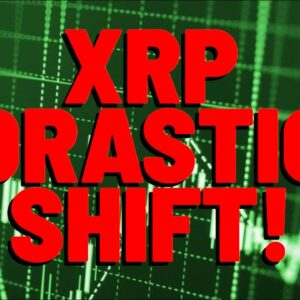XRP POSITIVE NEWS: Long Term BEHAVIOR DATA Shows DRASTIC SHIFT says Analyst, Will PROPEL Much Higher