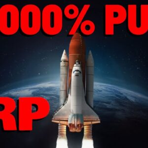 XRP Over 78,000% RALLY Changed Lives, EXPECT FIREWORKS AGAIN As History REPEATS