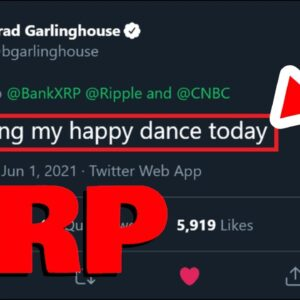 """Ripple CEO: """"I'M DOING MY HAPPY DANCE TODAY"""" Because Sometimes, It's The Little Things In Life"""