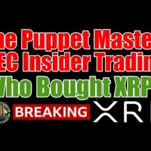 Ripple Granted Inside SEC XRP / Digital Asset Trading Information