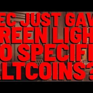 SEC Just CLEARED MULTIPLE Altcoins As NON-SECURITIES?! | 3 QUESTIONS For Fmr. SEC Dir. Hinman