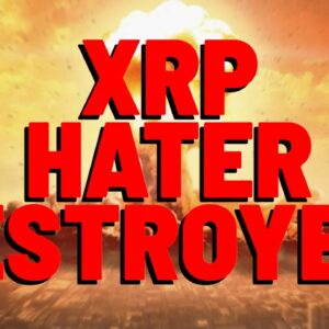 XRP: Ripple Employee Dominates CLUELESS HATER - Speaking Privileges REVOKED!