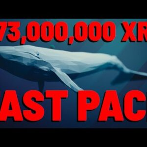 373 MILLION XRP ON THE GO | Data Shows XRP FAST PACE ADOPTION | Schiff Struggles With CRYPTO LOGIC
