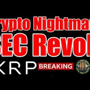 Crypto Ban? SEC & ETH vs. Ripple / XRP / USA Innovation