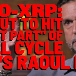 XRP Is Just 2% OF TOTAL CRYPTO MARKET CAP, But That % WILL EXPLODE   Raoul Pal: BEST YET AHEAD
