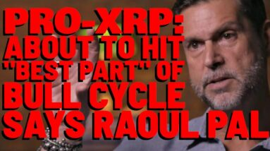 XRP Is Just 2% OF TOTAL CRYPTO MARKET CAP, But That % WILL EXPLODE | Raoul Pal: BEST YET AHEAD